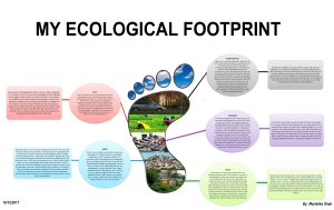 my-ecological-footprint-ms